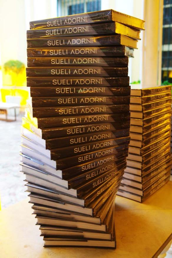 Livro Sueli Adorni Ambientes - Editora Principis (Foto: Dani Pacces)